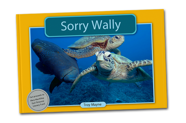 sorry-wally.png