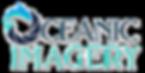 ocean-imagery-adj.png