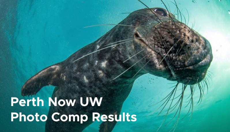 Perth Now UW  Photo Comp Results
