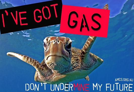 Turtle got gas.png