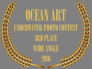 OCEAN ART PHOTO CONTEST 2016 AWARD BADGE