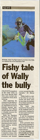 sorrywally article.png