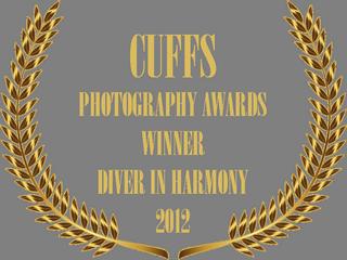 CUFFS UW PHOTO COMP 2012 AWARD BADGE.png