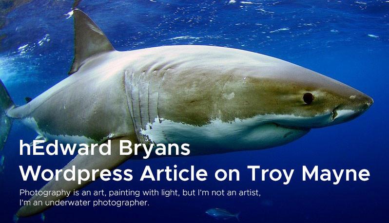 hEdward Bryans  Wordpress Article on Troy Mayne 