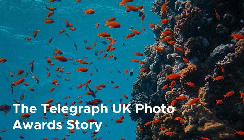 The Telegraph UK Photo Awards Story