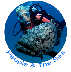 Peaople & The Sea Icon.png