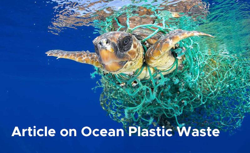 Article on Ocean Plastic Waste