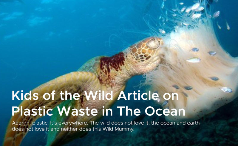 Kids of the Wild Article on  Plastic Waste in The Ocean