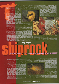 Shiprock 1.png