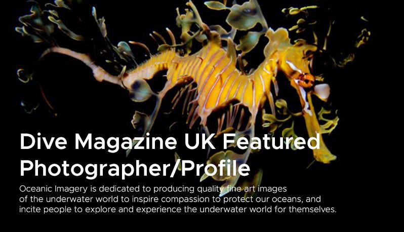 Dive Magazine UK Featured  Photographer/Profile