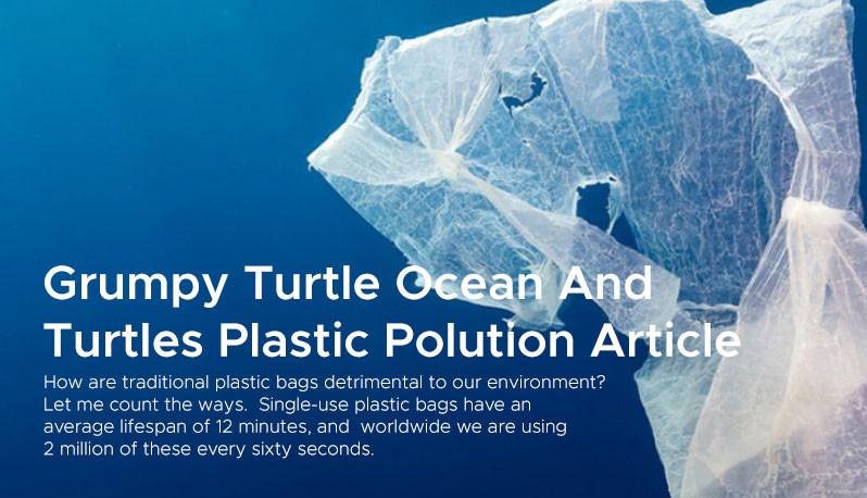 Grumpy Turtle Ocean And Turtles Plastic Polution Article
