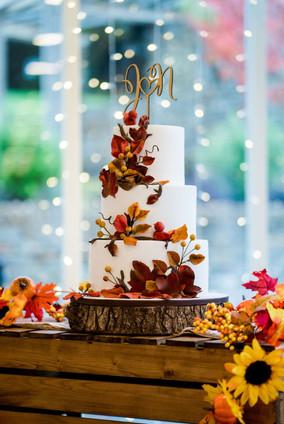 Cake Studio F.jpg