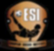 european soccer institute ESI
