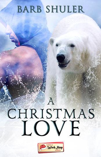 A Christmas Love.jpg