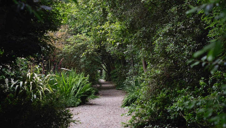 seaforde-gardens-home-images-garden-path