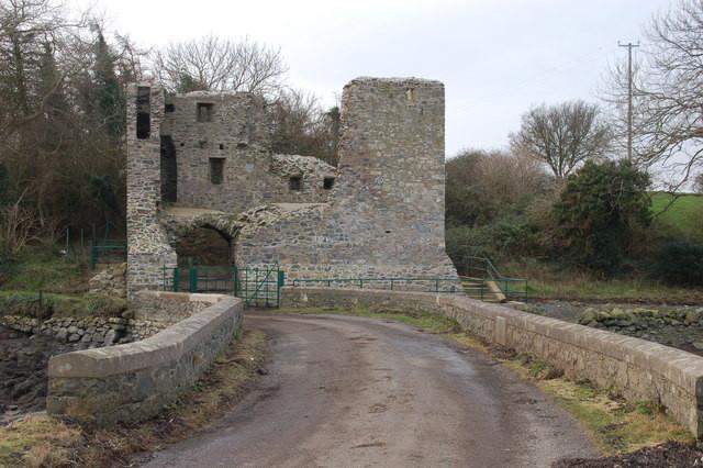 mahee_castle_strangford_lough_-_geograp