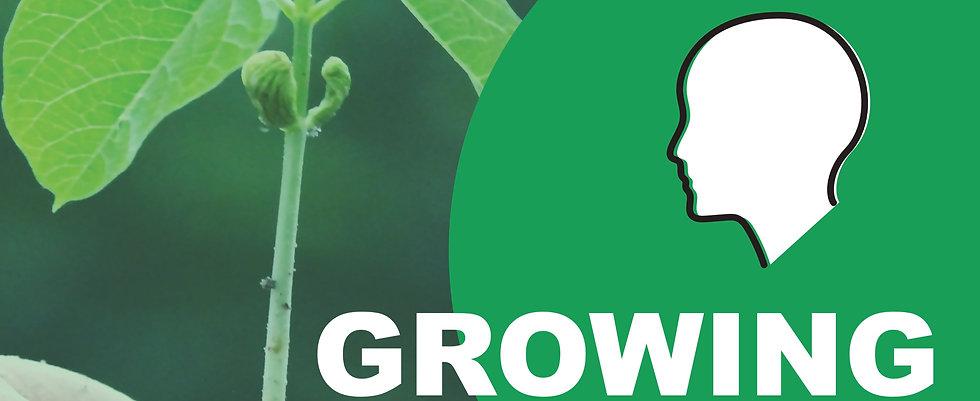 grow%20poster_edited.jpg