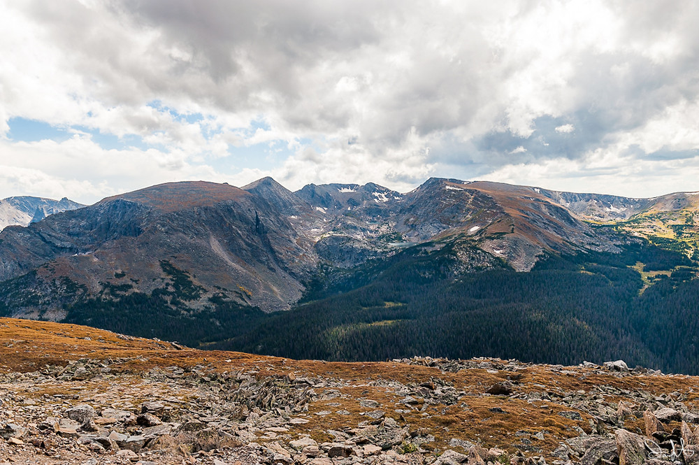 Forest Canyon, Rocky Mountain National Park, Trail Ridge Road