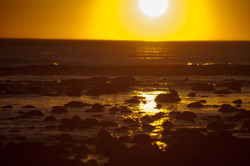 Malibu Lagoon Silhouette
