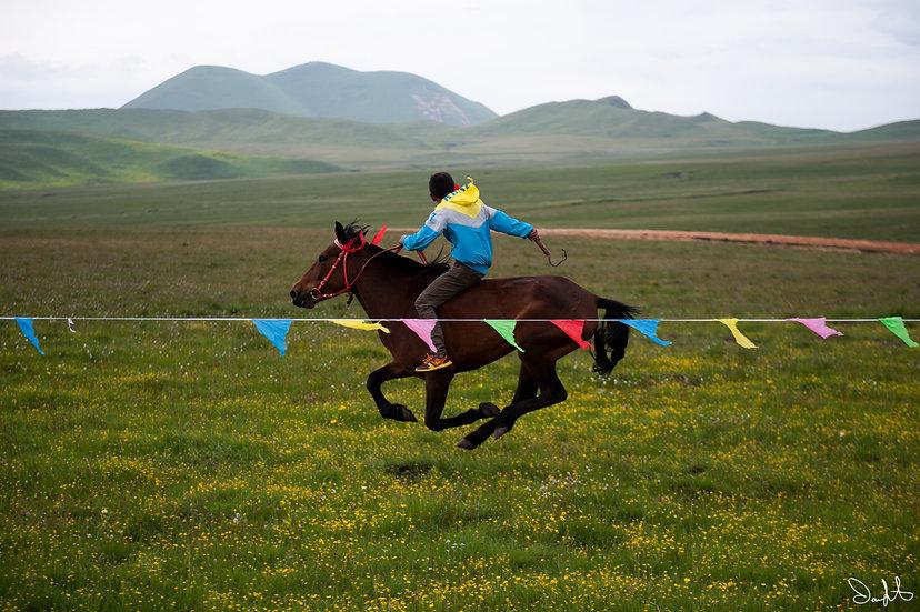 Home God Horse Race