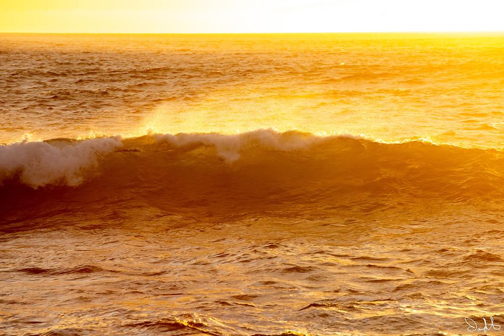 golden light illuminating wave