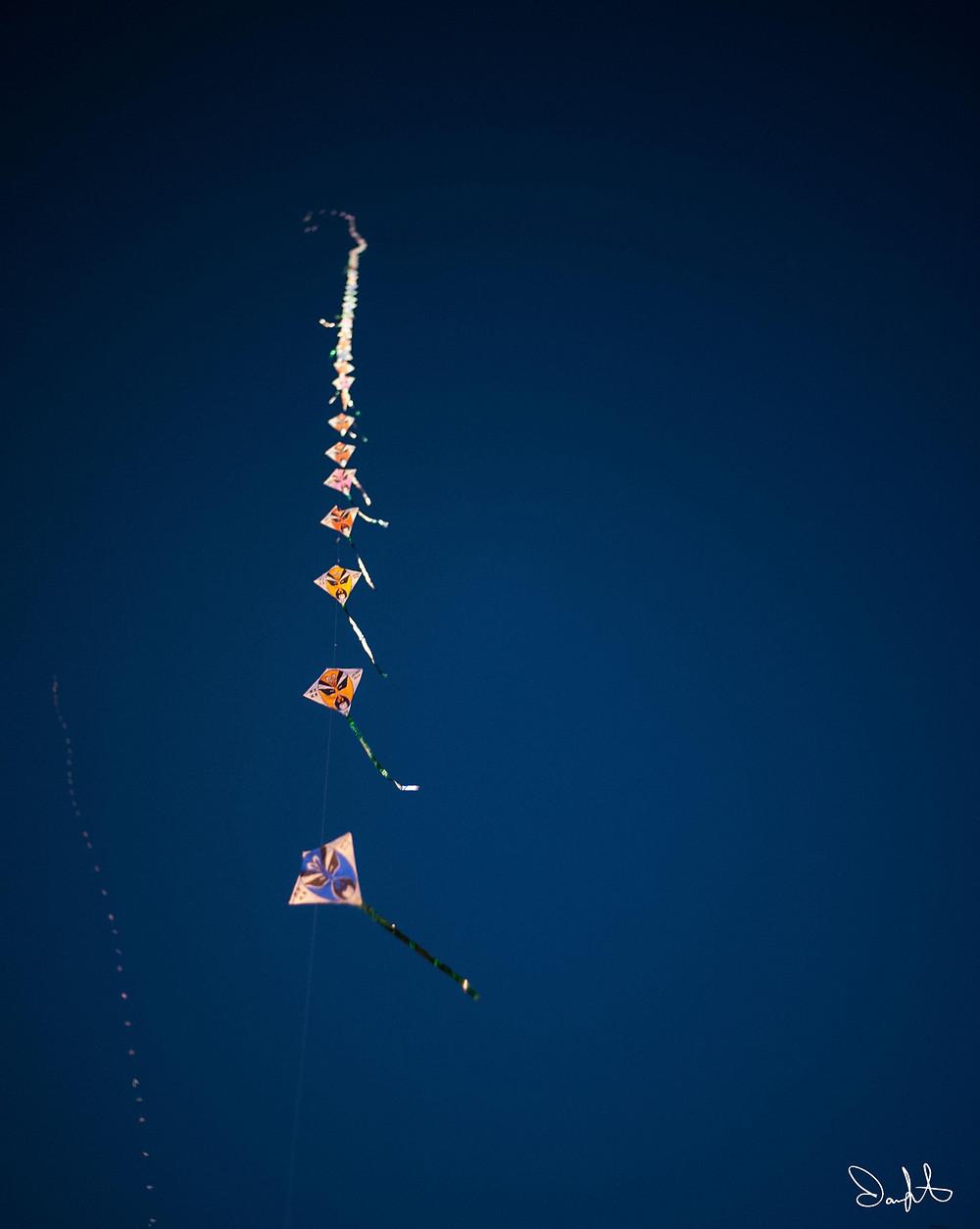 Kites in Xi'an