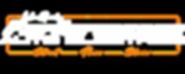 Performance Auto Electrics Logo