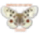 natura en xarxa logo2.png