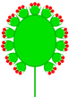 Doppelkoepfchen_(inflorescence).png
