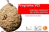 programa VCI.png