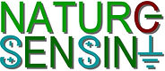 nature sensing 2a.jpg