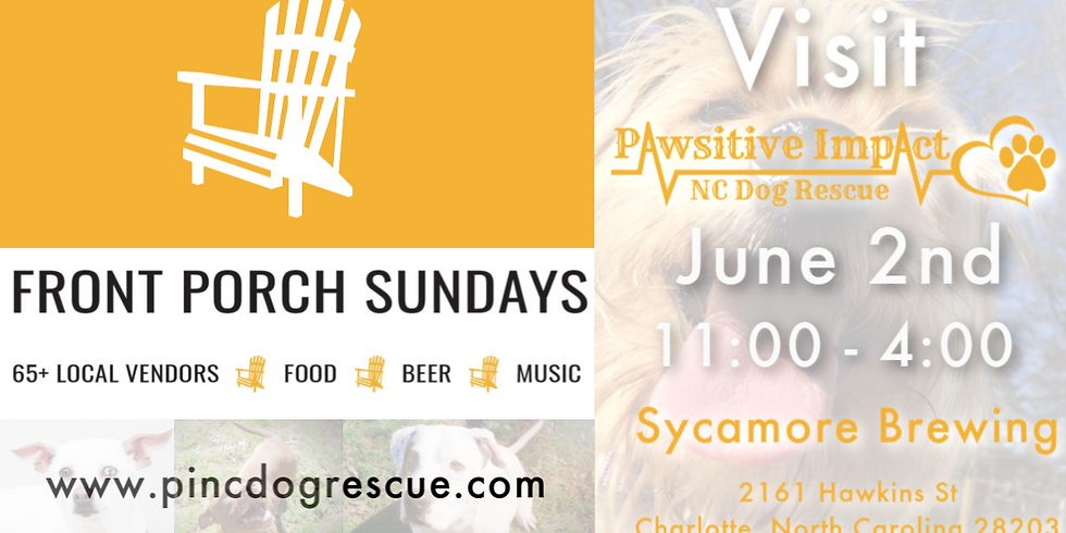 Front Porch Sunday with Pawsitive Impact NC Dog Rescue (1)