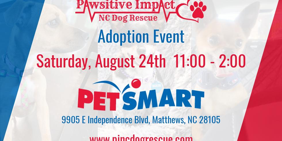 P.I.N.C. Dog Rescue adoption event.