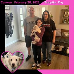 02282021ConwayFergusonAdoptionDay.png