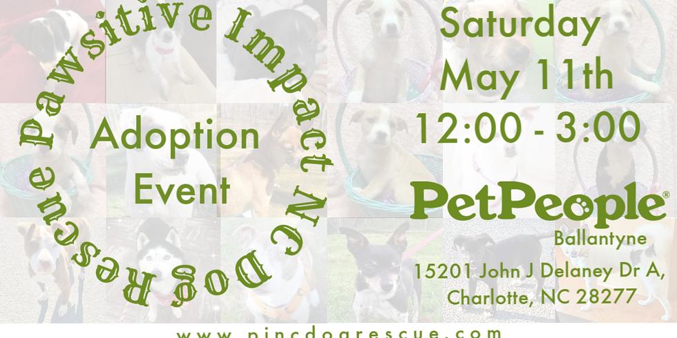 PINC Dog Rescue Adoption Event