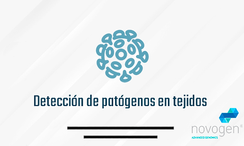 Detección de patógenos en tejidos