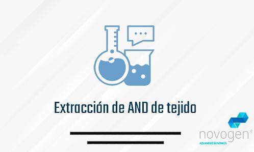 Extracción de AND de tejido