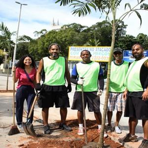 Arboristas Urbanos