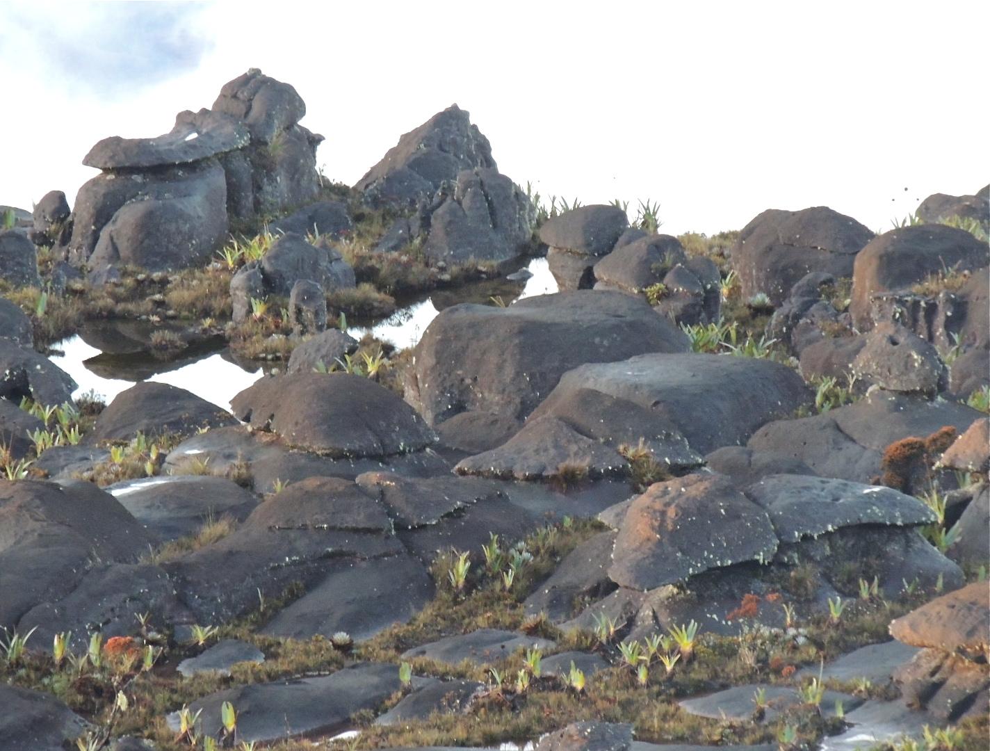 Det rochas arredondadas.JPG