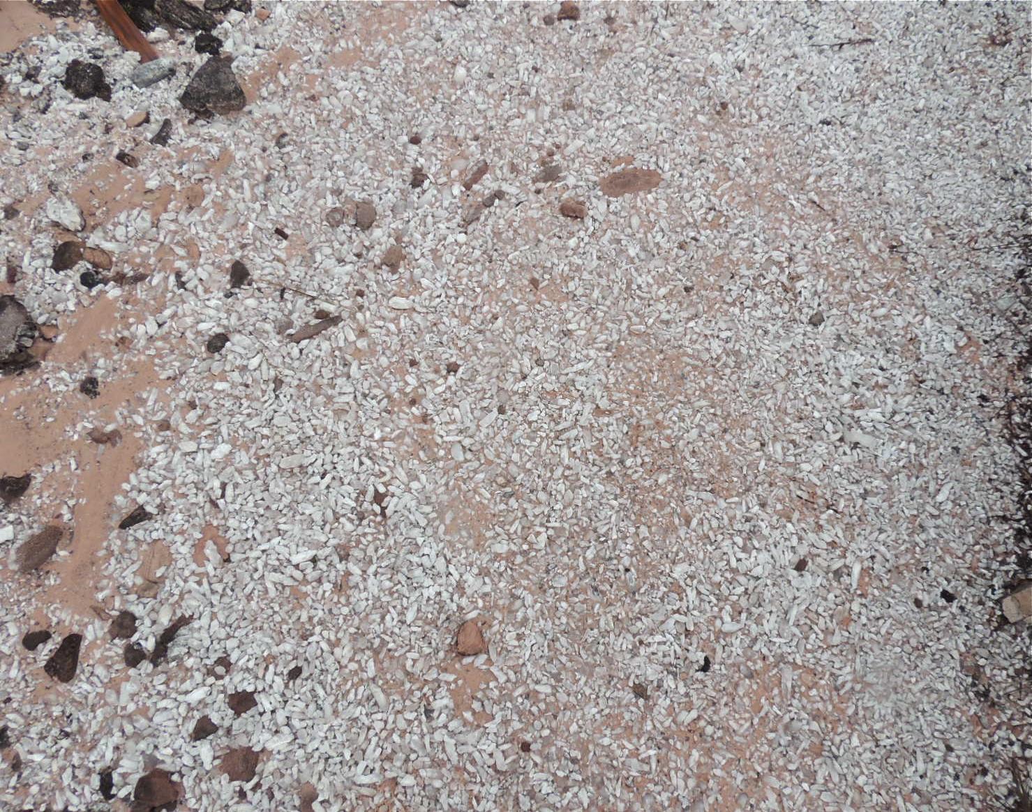 Piso areia rosa e quartzos.JPG