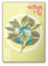 Poster, bebida energetica, typography, illustration