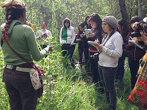 naturalmedicine_herbalhike_drelenaesparzadc_earthmedicine