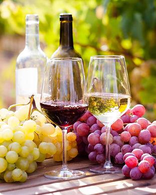 Grapes of Wine.jpeg