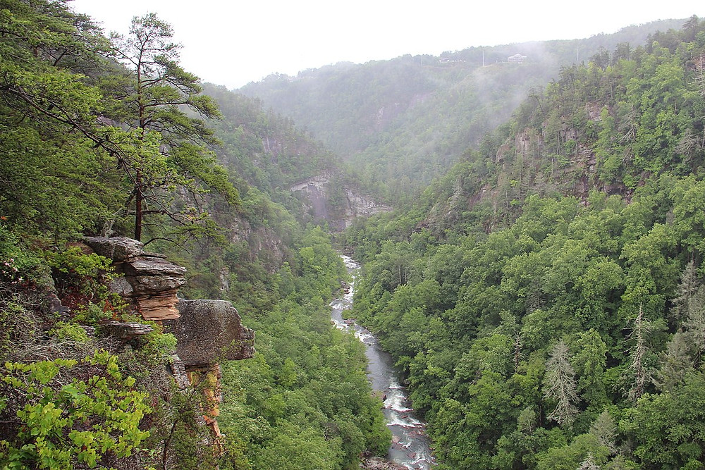 Tallulah Gorge in the spring showing the river through it