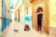 medina essaouira_edited.jpg