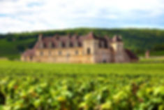 french-vineyard-chateau_1147-77.jpg
