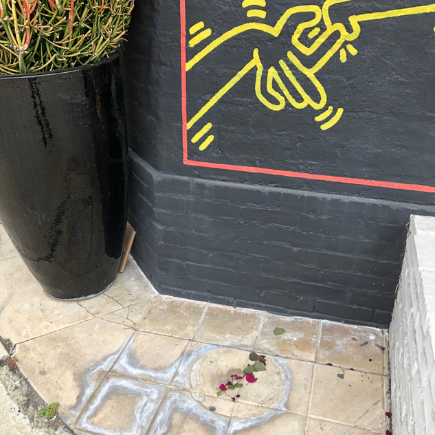 Veza Canetti's Yellow Street
