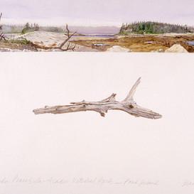 Schoodic Peninsula, Pond Island