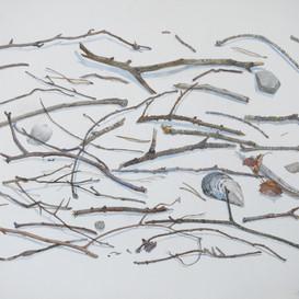 Fallen Twigs