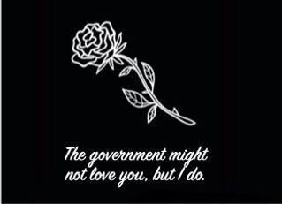 Rose v Govt.jpeg